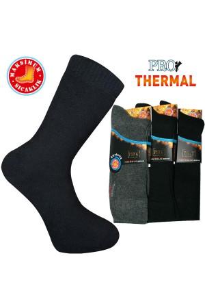 Pro Thermal Şeker Erkek Çorabı