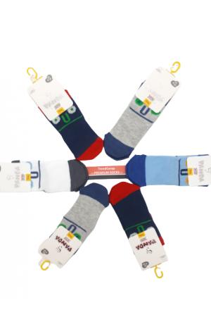 Panda Bebe Soket Çorap 6 Adet